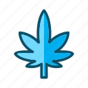 leaf, marijuana, nature, plant