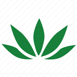 canabis, green, label, leaf icon