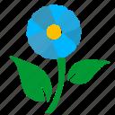 flower, green, label, leaf, nature