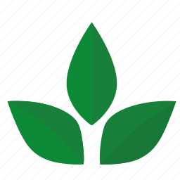 green, herbal, label, leaf, sign, tea icon