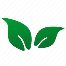 eco, green, leaf, plant, tea icon