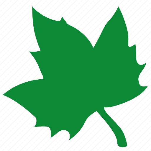 canada, green, label, leaf, maple, sign icon