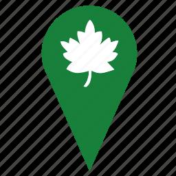 geo, leaf, nature, oak, park, point, tree icon