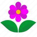 flower, green, leaf, pink, present icon