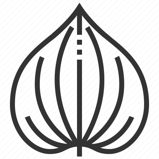 betel, leaf, leaves, plant, tree icon