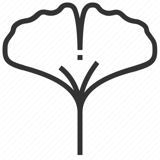 ginkgo, leaf, leaves, nature, plant icon