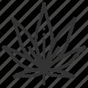 marijuana, leaf, leaves, nature, plant, tree