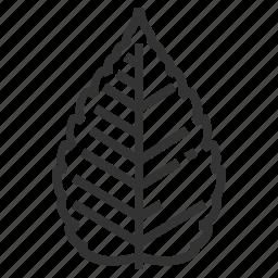 leaf, leaves, sign, zelkova icon