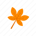 autumn, leaf, orange, palmatifid icon