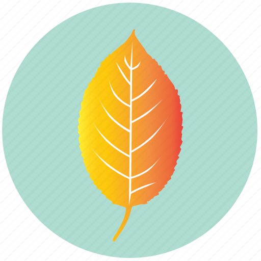 autumn, cherry, eco, forest, leaf, nature, yellow icon