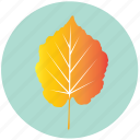 leaf, yellow, apple, forest, garden, nature, plant icon