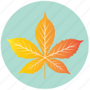 leaf, yellow, chestnut, ecology, nature, plant, garden icon