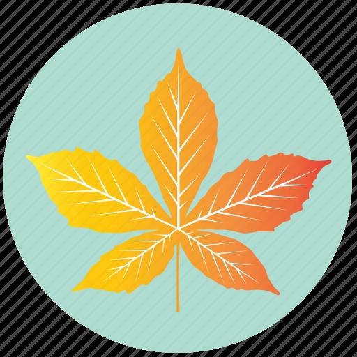 chestnut, ecology, garden, leaf, nature, plant, yellow icon