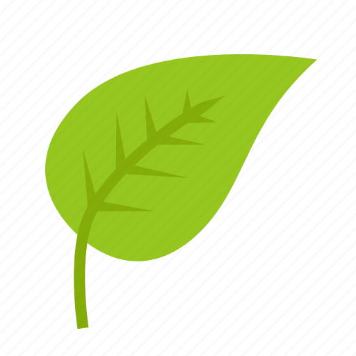 green, leaf, leaves, nature, plant, tree icon