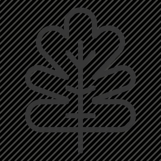 leaf, leaves, nature, plant, tree icon