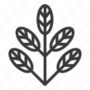 leaf, leaves, nature, plant, tree icon