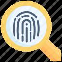 check, data, finger, fingerprint, identification, identity, magnifying glass