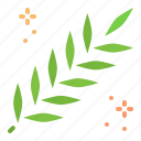 acacia, leaves, lent, spring icon