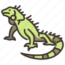 animal, green, iguana, jungle, lizard, wild, wildlife icon
