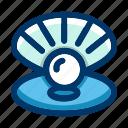 pearl, sea, shell, marine, nautical, ocean, seawater