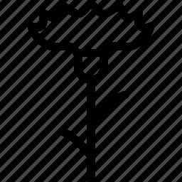 cornflower, flower, line, line icon icon