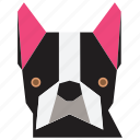 animal, animal face, bulldog, cartoon, dog, dog face, terrier icon