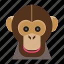 animal, animal face, cartoon, monkey, monkey face icon