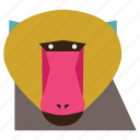 animal, cartoon, gorilla, gorilla face, monkey, monkey face icon