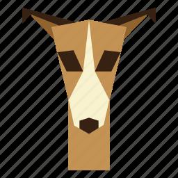 animal, animal face, dog, dog face, greyhound icon