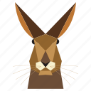 animal, animal face, cartoon, hare, hare face, rabbit, rabbit face icon
