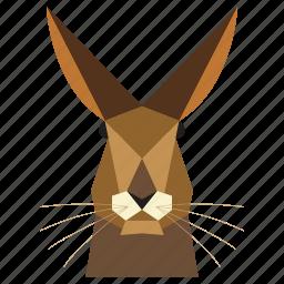 animal, animal face, cartoon, hare, hare face, rabbit, rabbit face icon