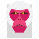 animal, cartoon, gorilla, gorilla face, macaque, monkey, monkey face icon