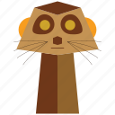 animal, carnivorous, cartoon, meercat, meercat face, suricata, sylvan icon