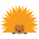 animal, cartoon, hedgehog, pet icon