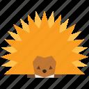animal, cartoon, hedgehog, pet icon