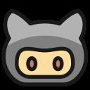 developer, community, github