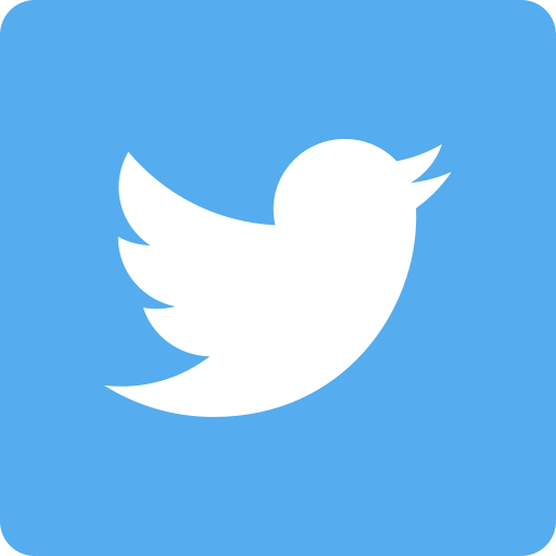 Image result for twitter social media icon