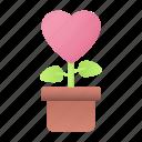 love, heart, pot, plant