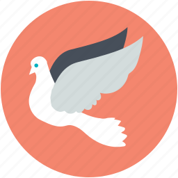 bird, dove, flying bird, love bird, peace sign icon