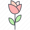 flower, love, lovely, rose, tulip, valentine, valentine's day icon