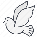 dove, love, love dove, lovely, pigeon, valentine, valentine's day icon
