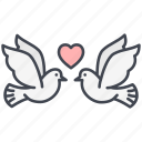 dove, love, lovely, pigeon, valentine, valentine's day icon