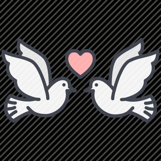 dove, love, lovely, pigeon, valentine, valentine's day icon