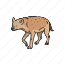aardwolf, animals, hyena, mammal, scavenger icon