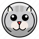 animal, animals, cat, cute, mammal, pet, zoo icon