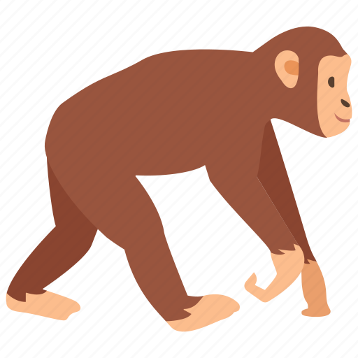 ape, chimp, chimpanzee, gibbon, marmoset, monkey, primate icon