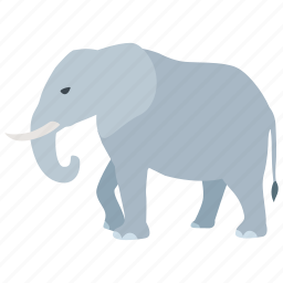 african, bull, elephant, indian, poaching, wild, zoo icon