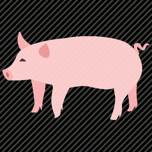 bacon, domestic, farm, pig, piglet, pork icon