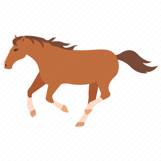 bronco, brumby, equestrian, horse, racing, stable, wild icon