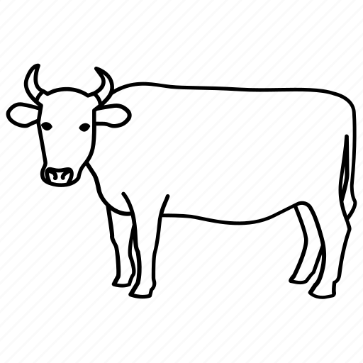 beef, bull, cow, dairy, farm, ox, steer icon